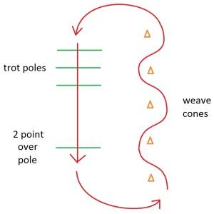 trot pattern